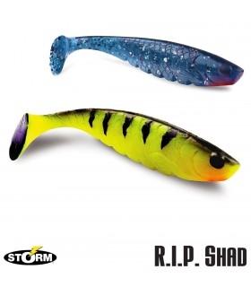 Storm R.I.P. Shad