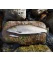 Viirastus Kraken meriforelli käsitöölandid